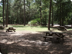 Devil's Millhopper Picnic Area
